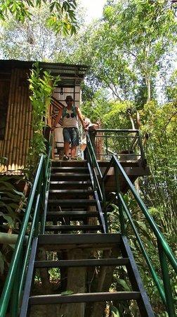 Khao Sok Tree House Resort : maison