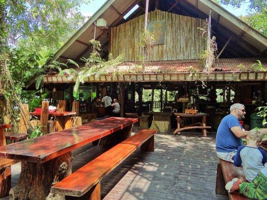Khao Sok Tree House Resort : restau / bar
