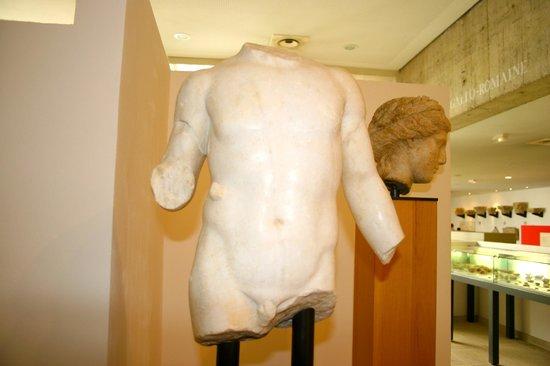 Sites Archéologiques de Vaison la Romaine : Musée archéologique Théo-Desplans