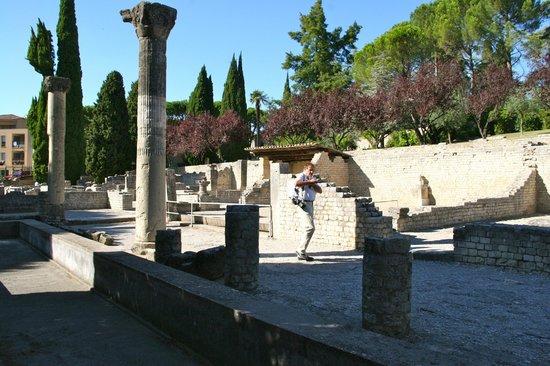 Sites Archéologiques de Vaison la Romaine : Quartier de Puymin Vaison