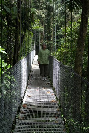 Arenal Hanging Bridges: One of the bridges in the rain