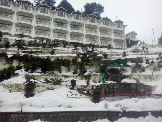 Hotel  Green Top: Hotel3