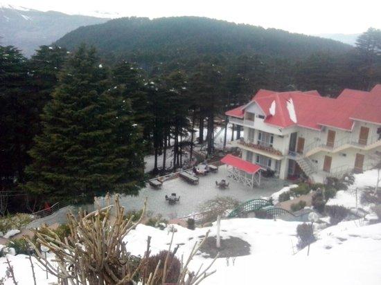Hotel  Green Top: Hotel2