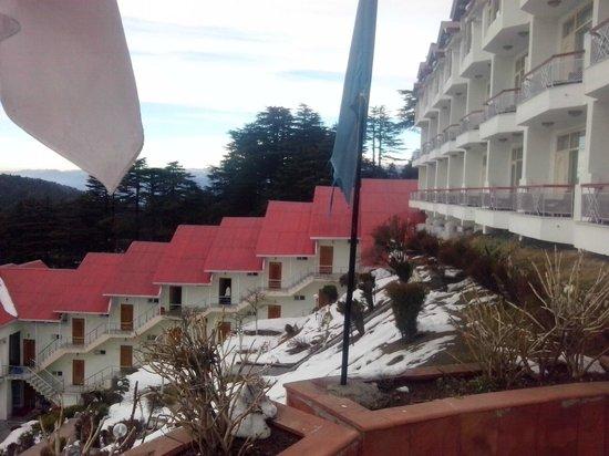 Hotel  Green Top: Hotel1