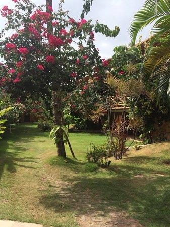 Condominio Residencial Pipa Park: Les jardins
