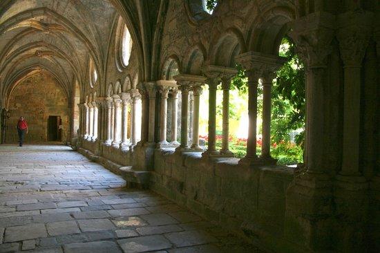 Abbaye de Fontfroide : cloître Fontfroide