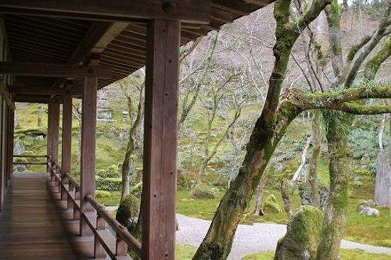 Komyozen-ji Temple : 外廊下