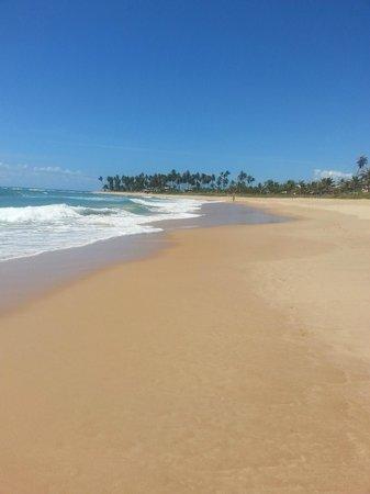 Vila Galé Marés : Praia super limpa
