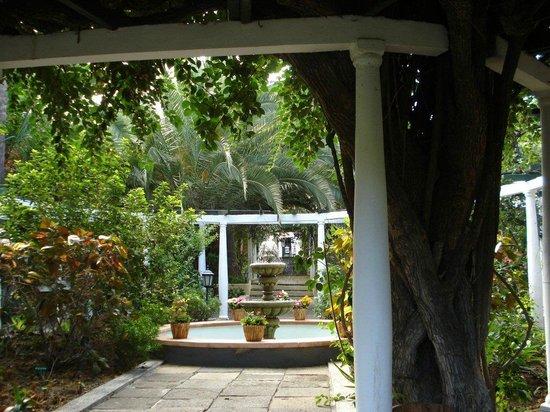 Jardín de Orquídeas de Sitio Litre: Sitio Litre Tenerife