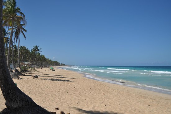 Bavaretto Ocean Club: Пляж Макао