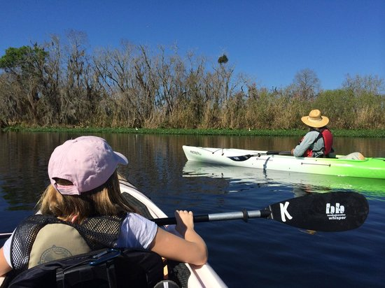 Central Florida Nature Adventures: Gorgeous Day on the St. Johns River