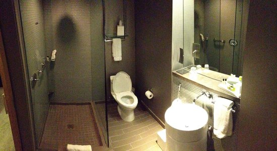 Loews Chicago O'Hare Hotel: King 11th floor. Bathroom with rain shower head. Awesome.