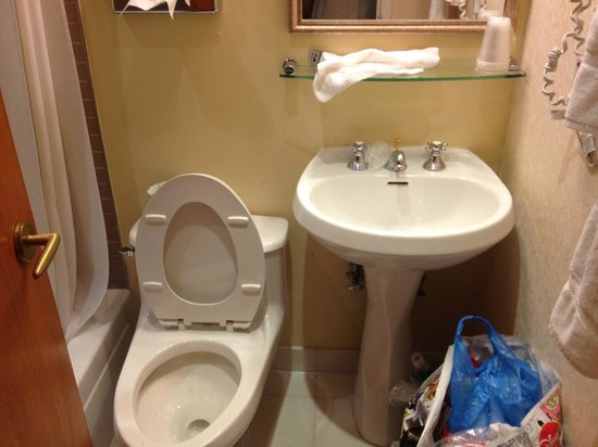 Clarion Hotel Park Avenue : Banheiro