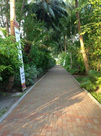 Royal Island Resort & Spa: Main walk way through the island