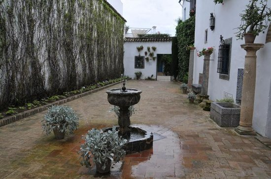 Palacio Museo de Viana : 庭