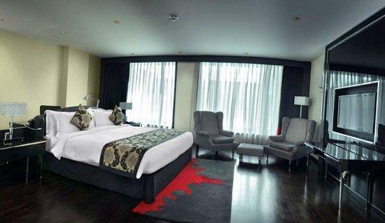 Radisson Blu Hotel New Delhi Paschim Vihar: My nice room probably a junior suite