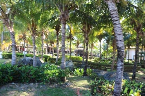 Melia Cayo Santa Maria: lindo el espacio del hotel