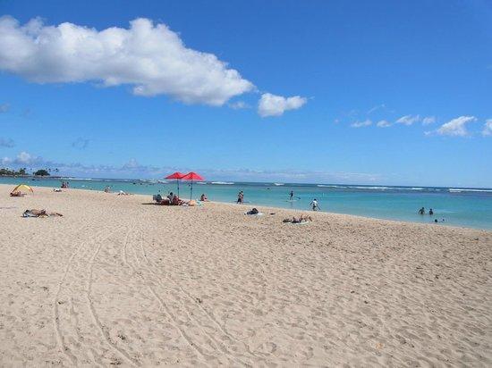 Ala Moana Beach Park: アラモアナビーチ