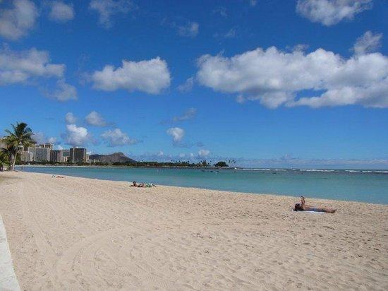 Ala Moana Beach Park : アラモアナビーチ