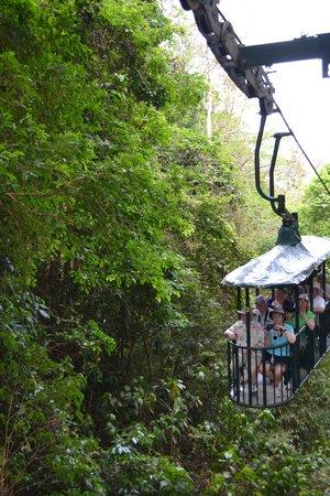 Rainforest Adventures: aerial tram, Costa Rica