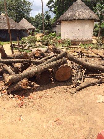 Kabwata Cultural Village: Raw wood for sculpting