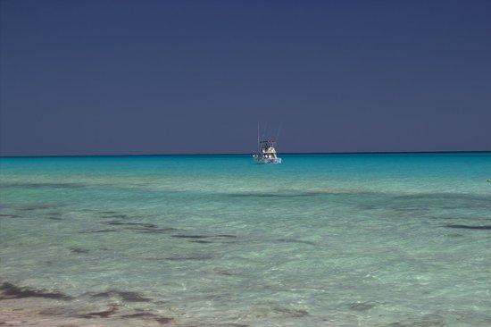 Allegro Playacar: fishing off the coast