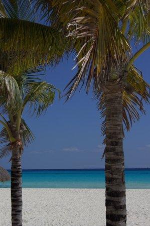 Allegro Playacar: the beach