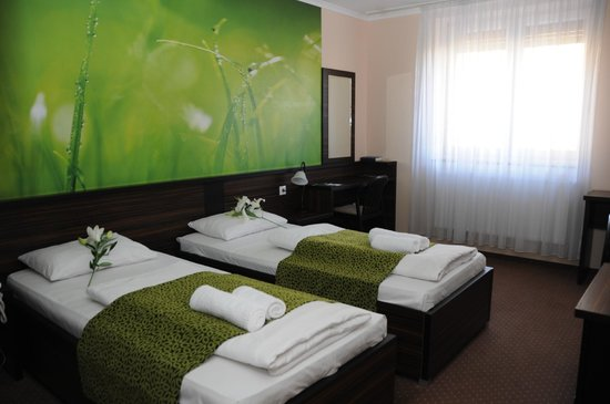 Green Hotel: Standard room