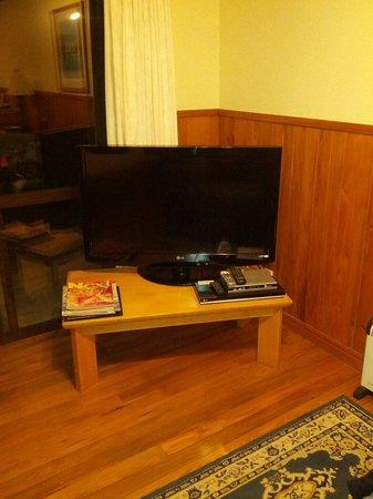 Punakaiki Beachfront Motels: TV..