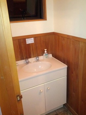Punakaiki Beachfront Motels: Lavabo..