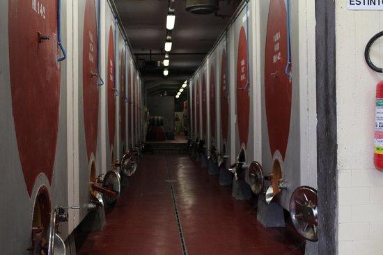 Castello di Monterinaldi: Fermentation Tanks