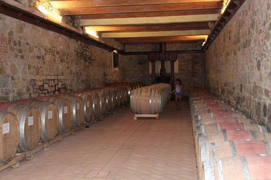 Castello di Monterinaldi: The wine ageing in barrels