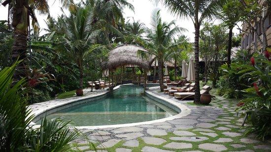 Alaya Resort Ubud: Swimming pool at alaya resort