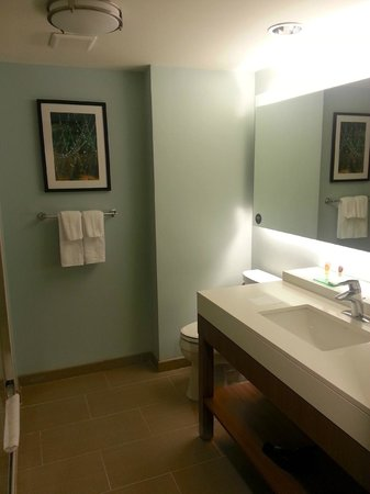 Hyatt Place Daytona Beach - Oceanfront : CLEAN & updated bathrooms
