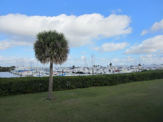 The Wyvern Hotel Punta Gorda: What a view to wake up to