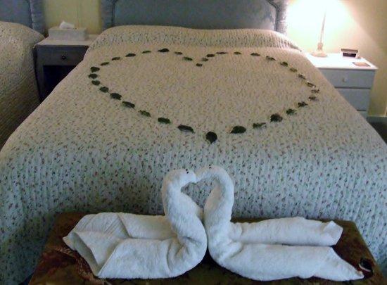 Pheasant Suites: Loved the swan towels!