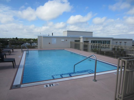 The Wyvern Hotel Punta Gorda: Rooftop pool overlooking the bar/lounge area