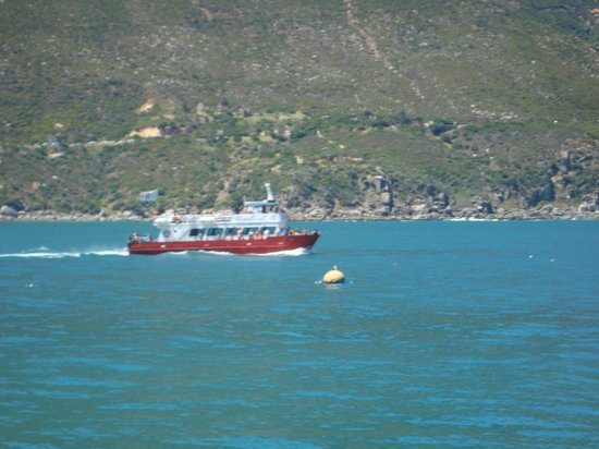 Bay Harbour Market: Picture taken in Hout Bay