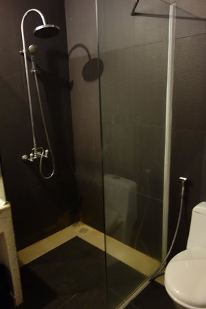 Apsara Centrepole Hotel: Shower doesn't have a door on it, so bathroom gets completely wet