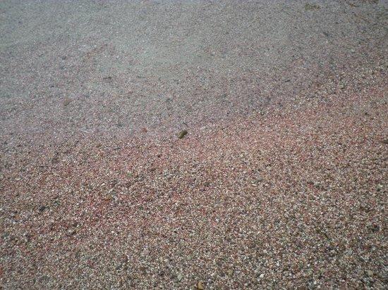 Cala Sapone: sabbia2
