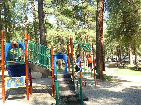 Sportsman's Campground and Mountain Cabins: Playground for the kiddos!
