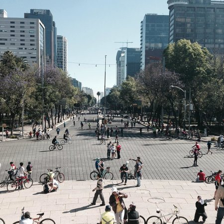 El patio 77, first eco-friendly B&B in Mexico City : Paseo de la Reforma