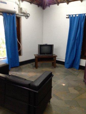Hotel Laguna Anjuna: The TV!