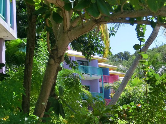 Leverick Bay Resort : the rooms
