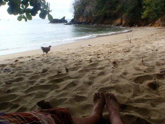 Lillibets: peeps on the beach