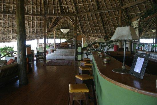 Tortilis Camp: The bar area!