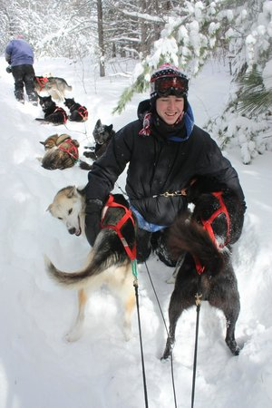 White Wilderness Sled Dog Adventures: Friendly, happy dogs.