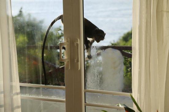 Leopard Beach Resort & Spa: Fenster und Türen dreckig und Türen PVC teile stehen ab Stolpergefahren