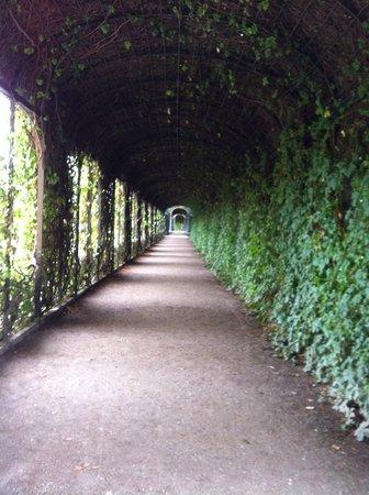Palacio de Schönbrunn: Schonnbrunn Castle - view of walkway - along gardens to east of Palace