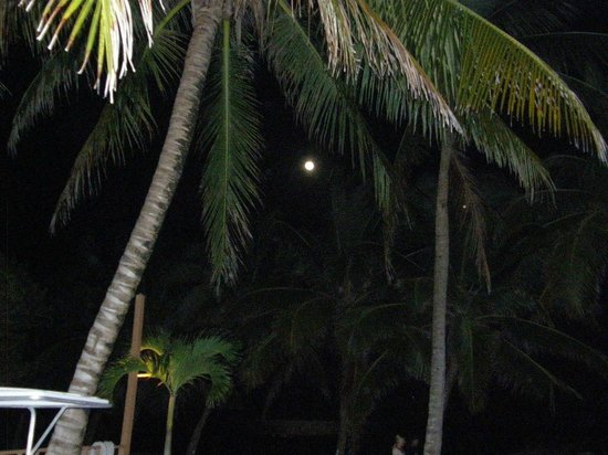 Caye Casa: Picture of moon from our porch.